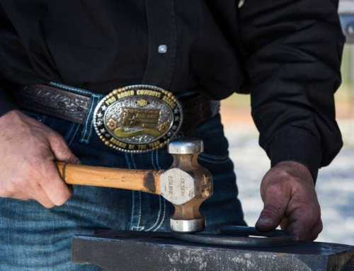 Olsen Equine: Education for the Horse Owner