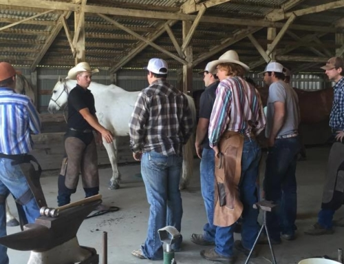 2016 Shoeing Clinic