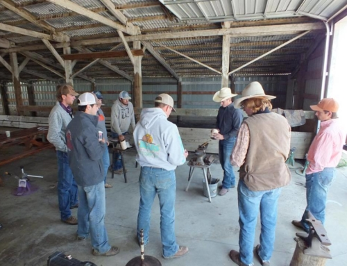 Olsen Equine to Host Shoeing Clinic in Brock, TX